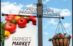 Decorative Pole Banner Bracket Combo with Hanging Basket